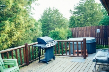 Zen Getaway Cabin patio and gas grill